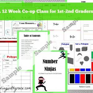 Math homeschool coop class